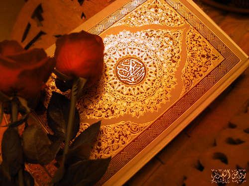 قرآن - qoran قرآن با وجود نفهمیدن معنی ، قرآن خواندن چه فایده ای دارد ؟ qoran bashiran