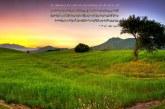 تصاویر باکیفیت همراه با آیه قرآن