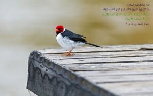احادیث عید نوروز