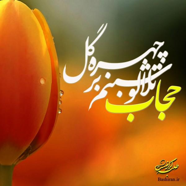 زن باحجاب حجاب عکس نوشته های حجاب hejab2